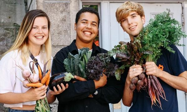 Sustainability at McGi</body></html>